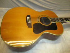 70's TAKAMINE JUMBO 12 STRING -- ONLY for D-B-E-A PLAYERS