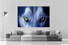 WOLF EYES LOUP GRIS  Wall Art Poster Grand format A0 Large Print