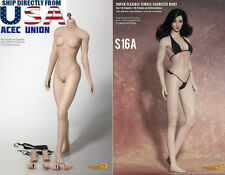 Phicen 1/6 Super-Flexible M Bust Seamless PALE Body Steel Skeleton S16A U.S.A.