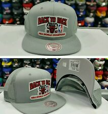 NBA Gray Mesh Chicago Bulls back to back 91-92 Mitchell and Ness Snapback