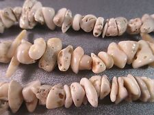 White Coral Rough Nuggets Beads 84pcs