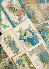 Nice Lot of ~25 VICTORIAN FORGET-ME-NOTS blue~ FLOWERS greetings Postcards-a324