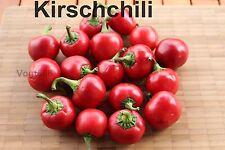 15 Kirschchili Cherry Bomb Samen ideal zum füllen aus Ungarn