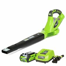GreenWorks 40V Cordless Variable Speed Leaf Sweeper/Blower w/ Li-Ion Battery