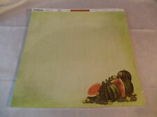 Scrap Book Paper-Watermelon theme-25 Pack,12x12 size,back lined for recipes