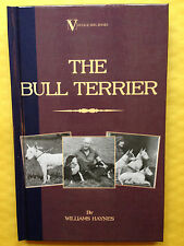 DOGS BULL TERRIERS HAYNES PIT GAME SHOWS BREEDING TERRIER FIGHTING