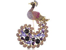 Exotic Purple Lavender Peacock Pea Train Crystal Rhinestone Pin Brooch
