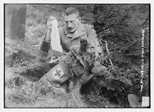 British Army Medic Dog Bandages Red Cross World War 1 7x5 Inch Reprint Photo