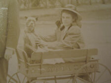 ANTIQUE AMERICAN PITBULL ICONIC IMAGE EXPRESS TOY WAGON EDWARDIAN USA RPPC PHOTO
