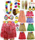 Ladies Womens Hawaiian Fancy Dress Grass Skirt Lei Flower Bra Hula Pink Blue
