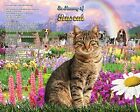 Rainbow Bridge Pet Memorial Personalized w/Your Pet's Picture & Name & Any Poem