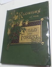 1887 Flowers of the Field & Forest from Original Water-Color Drawings