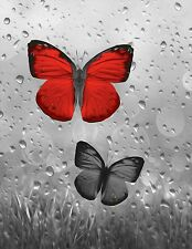 Red Gray Butterflies Raindrops Bathroom Bedroom Home Decor Wall Art Picture