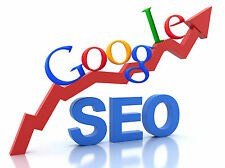 Guarantee'd 1st Page, 12 Months High PR SEO Marketing & Submission Programme