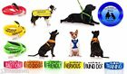 Colour Coded Dog Awareness Harnesses Leads Collars Prevent Accident Warns others