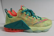 Nike Lebron 12 Low XII Lebronald Palmer QS PRM 776652-383 Size 8 DS LIMITED LBJ