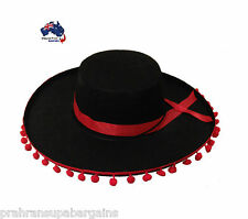 Mexican Sombrero Felt Hat Party Fancy Dress Fiesta Costume Spanish Red Poms
