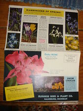 Vintage BURGESS SEED & PLANT CO. BROCHURE POSTER Color Illustrated