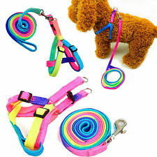 NEWLY PET DOG PUPPY MATCHING COLLAR AND LEAD SET LEASH ADJUSTABLE COLOURS