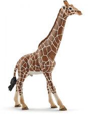 T6) Schleich (14749) Giraffe Giraffen Bulle Schleichtiere Schleichtier