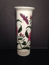 Vintage Portmeirion Botanic Garden Serif Vase PURPLE ROCK ROSE Shield Stamp Mint