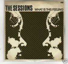 (F938) The Sessions, What is This Feeling - DJ CD