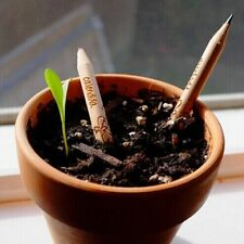 Set Of 8 Sprouting Bud Sprout Pencil Plant Seeds - Engraved in English - US SELL