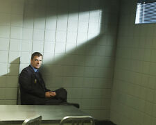 Noth, Chris [Law and Order : CI] (31153) 8x10 Photo