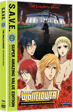 Wallflower  .. The Complete Series Collection .. Anime .. 4 DVD Set .. NEU . OVP