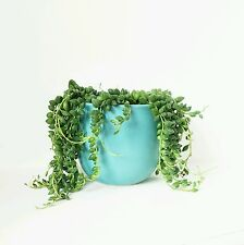 Vintage Retro Midcentury West German Pottery Planter plant pot