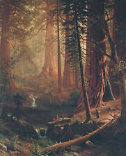 Giant Redwood Trees of California 75cm x 60.6cm by Albert Bierstadt Canvas Print