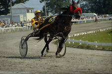 585099 Harness Racing Annual Perth Fair Ontario Canada A4 Photo Print