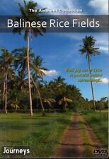 BALINESE RICE FIELDS VIRTUAL WALK WALKING TREADMILL WORKOUT DVD AMBIENT COLL
