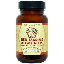 Pure Planet Red Marine Algae PLUS 90 caps VIRUS SUPPORT Natural Anti-Viral Agent