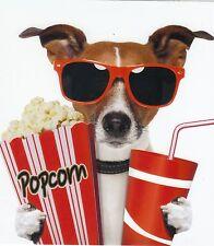 Klappkarte de luxe: Jack Russel - Terrier Chico als Kinogänger