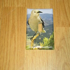 CLARK'S NUTCRACKER WILD BIRD LIGHT SWITCH COVER PLATE
