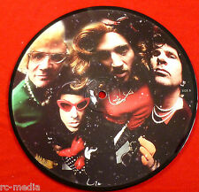 "RED HOT CHILI PEPPERS -Snow (Hey Oh) - Rare UK 7"" Picture Disc (Vinyl Record)"