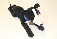"Beautiful Black and White Greyhound Soft Toy ""Toby"" With Detailed Collar - 40cm"