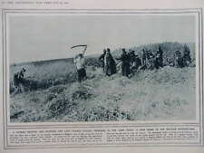 1914 BELGIUM SCYTHING AND TRENCH DIGGING; FUGITIVES FROM TIRLEMONT WWI WW1