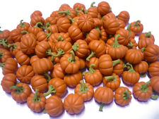 10 Loose Pumpkins Dollhouse Miniatures Fruit Vegetable Supply Deco Halloween Day