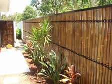 BAMBOO FENCE PANELS,BAMBOO SCREENS,BAMBOO PRIVACY,BAMBOO FENCING, BIGGEST IN QLD