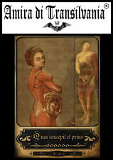 Vintage tarot rare collection anatomy medicine surgery human body maps card N°3