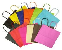 Landscape Large Paper Party Gift Bags ~ Boutique Shop Bag ~ Select Your Colour