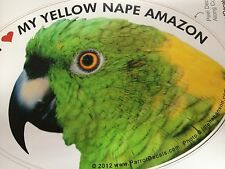 ON SALE! Yellow Nape Amazon Parrot Exotic Bird Vinyl Decal Bumper Sticker