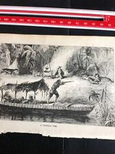 H2-2 Ephemera 1872 Book Plate Amazon - A Terrible Time Big Cat Attack