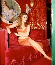 1960-1969 ANN MARGRET color classic glamour photo (Celebrities & Musicians)