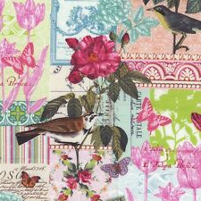 Fat Quarter Belle Rose Bird Cotton Quilting Fabric Michael Miller 4783 Pink