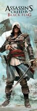 ASSASSIN'S CREED IV POSTER ~ EDWARD BADASS DOOR 21x62 Video Game Black Flag 4