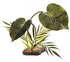Komodo Woodland Canopy Reptile Vivarium Terrarium Rainforest Plant