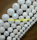 "GENUINE Natural 4/6/8/10/12mm Moonstone Round Loose Beads 15"" Choose size"